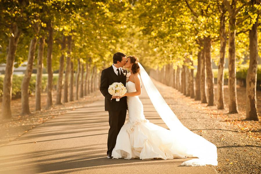 fotografo professionista matrimonio vercelli novara